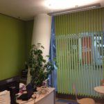 Die grüne Vertikaljalousie setzt das Büro farblich in Szene.